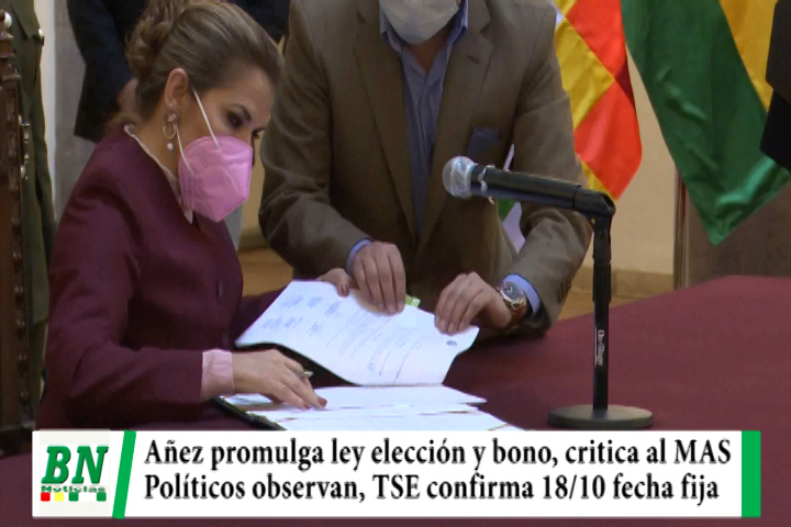 Lee más sobre el artículo Elección 2020, Añez promulga Ley elección y Bono y critica al MAS, políticos observan, TSE confirma 18/10 fecha fija