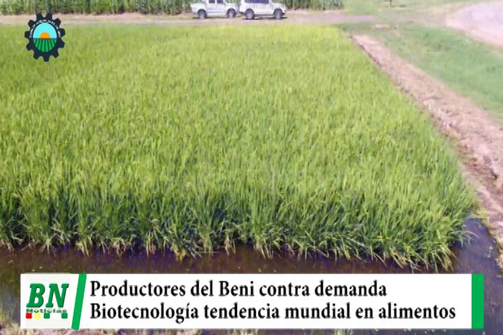 Lee más sobre el artículo Agropecuarios del Beni contra demanda y aseguran que Biotecnología es tendencia mundial