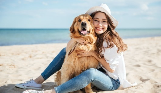 Lee más sobre el artículo Disfrutar los viajes con nuestros pequeños amigos peludos: La tendencia Pet Friendly se toma Miami
