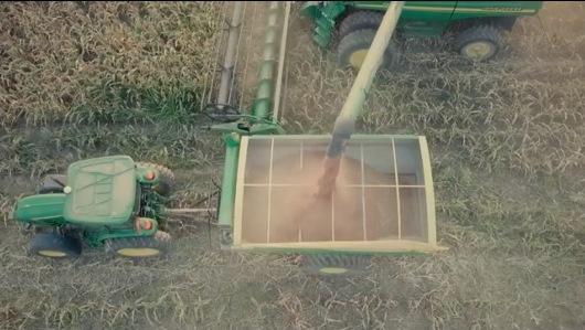 Lee más sobre el artículo Motivador video: La historia de un agricultor generador de empleos