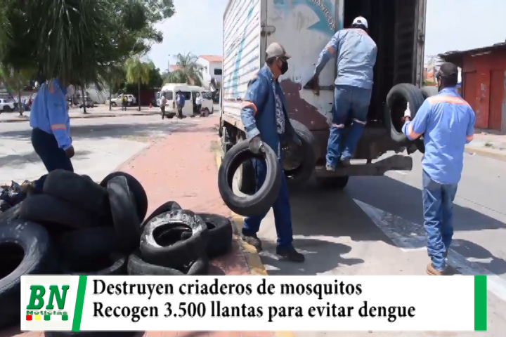Lee más sobre el artículo Destruyen criaderos de mosquitos y recogen 3,500 llantas para evitar el dengue