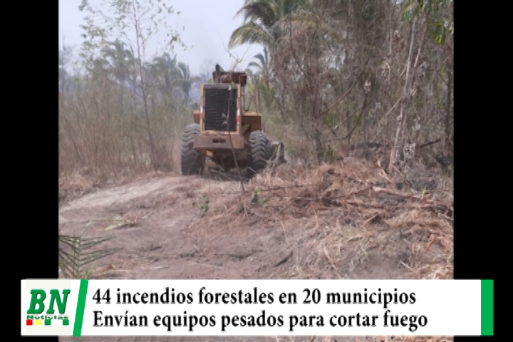 Lee más sobre el artículo Registran 44 incendios forestales en 20 municipios y envían equipos pesados para cortar fuego