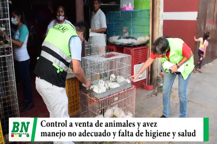 Lee más sobre el artículo Municipio realizó operativo de control a venta de animales y avez silvestres y encuentra mal manejo