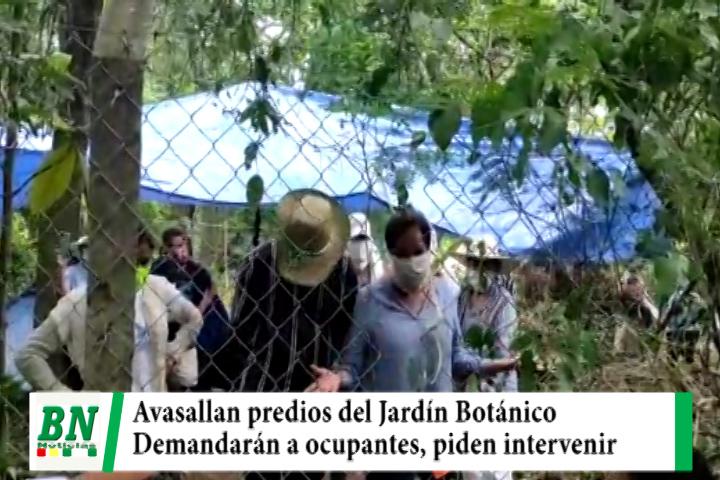 Lee más sobre el artículo Avasallan predios del Jardín Botánico y anuncian demanda penal, piden a policía y fiscalía actuar