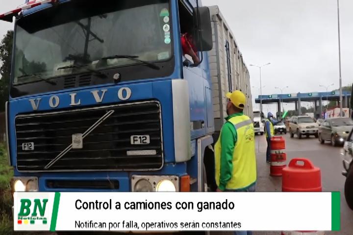 Lee más sobre el artículo Realizan control a camiones que ingresan con ganado y notifican por falta de seguridad