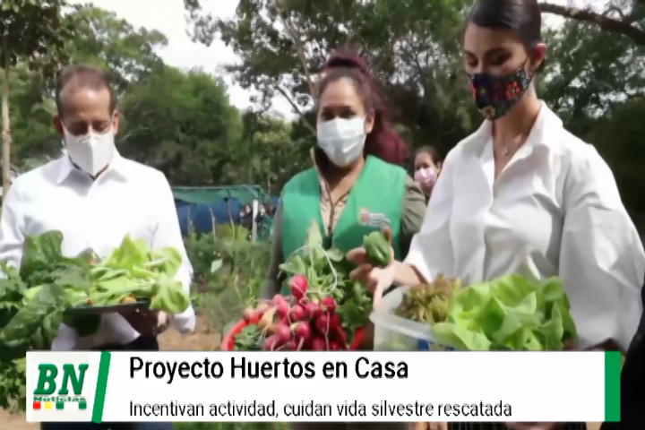 Lee más sobre el artículo Huertos en Casa es apoyado por Gobernación e incentivan proyectos, vida silvestre atendida con dichos recursos