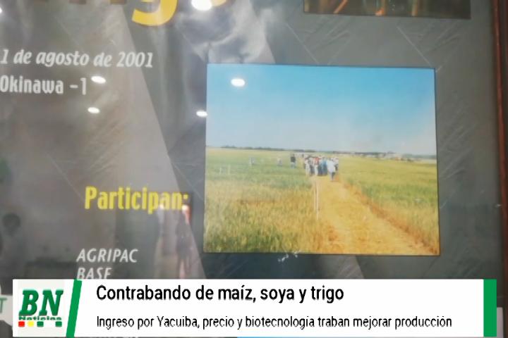 Lee más sobre el artículo Contrabando afecta a los productores de oleaginosas y piden reunión con el gobierno y mayor control en fronteras