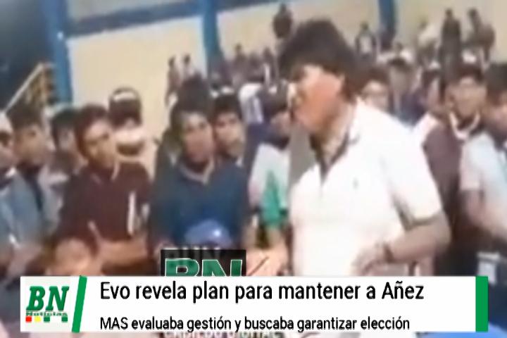 Lee más sobre el artículo Evo revela como se mantuvo a Añez en el Gobierno y cívicos con opositores piden cierre de caso golpe de estado