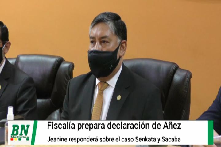 Lee más sobre el artículo Fiscal Lanchipa tomará declaraciones a Jeanine Añez por vía virtual
