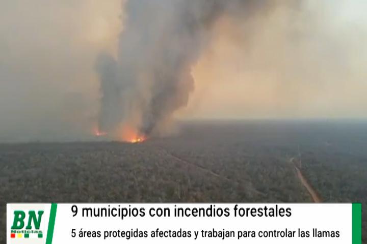 Lee más sobre el artículo Incendios afectan a 9 municipios y 8 áreas protegidas, bomberos trabajan en las zonas afectadas