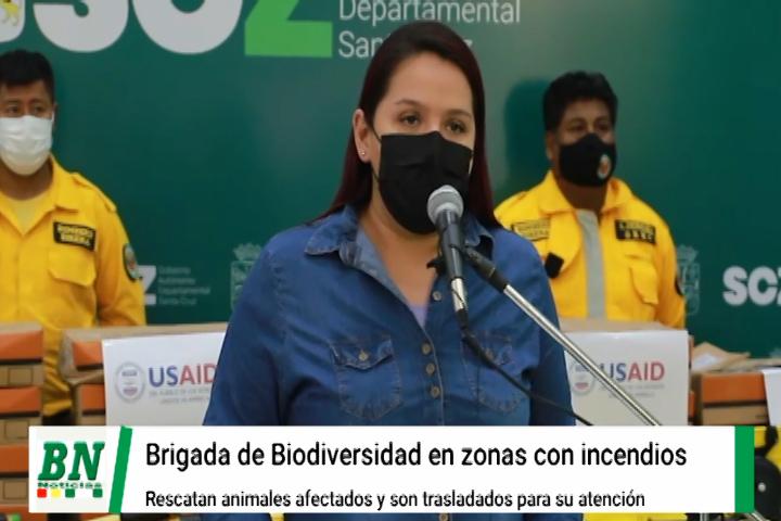 Lee más sobre el artículo Brigada de Biodiversidad en zonas afectadas por incendios y rescata a animales silvestres, albergue para atención