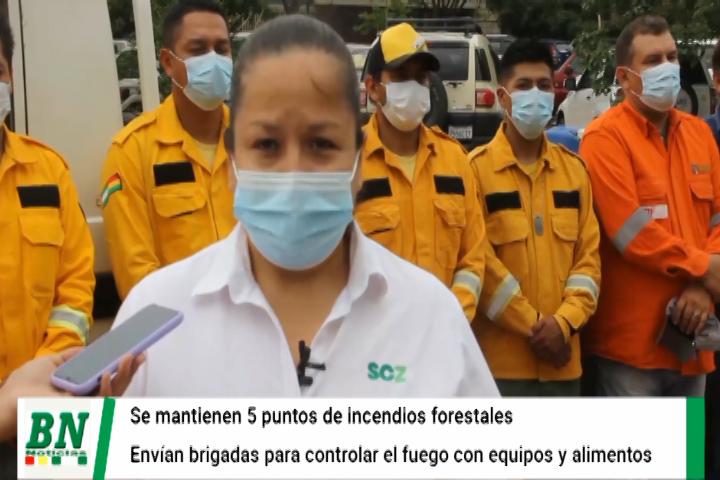 Lee más sobre el artículo Salen brigadas de bomberos de la Gobernación para liquidar los 5 puntos de incendios, se prevé que llueva en San Rafael y Concepción